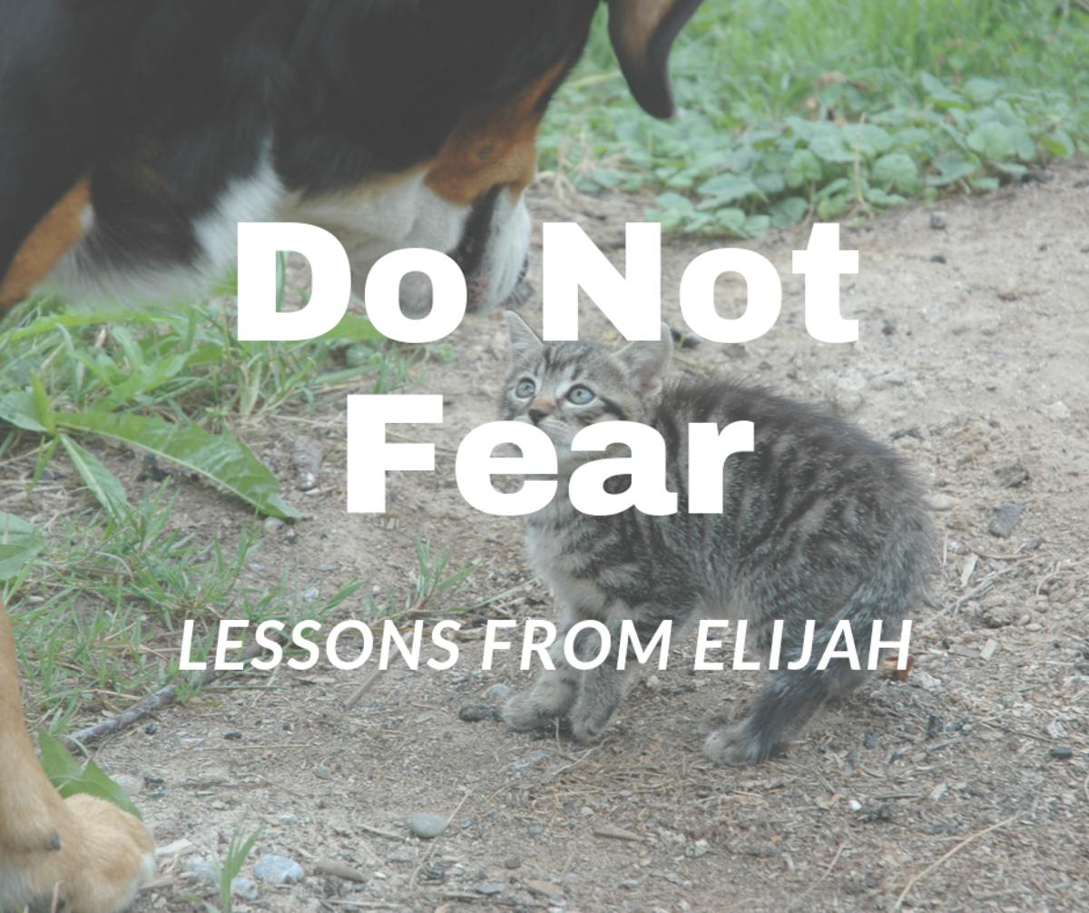 Elijah helps us learn to trust God