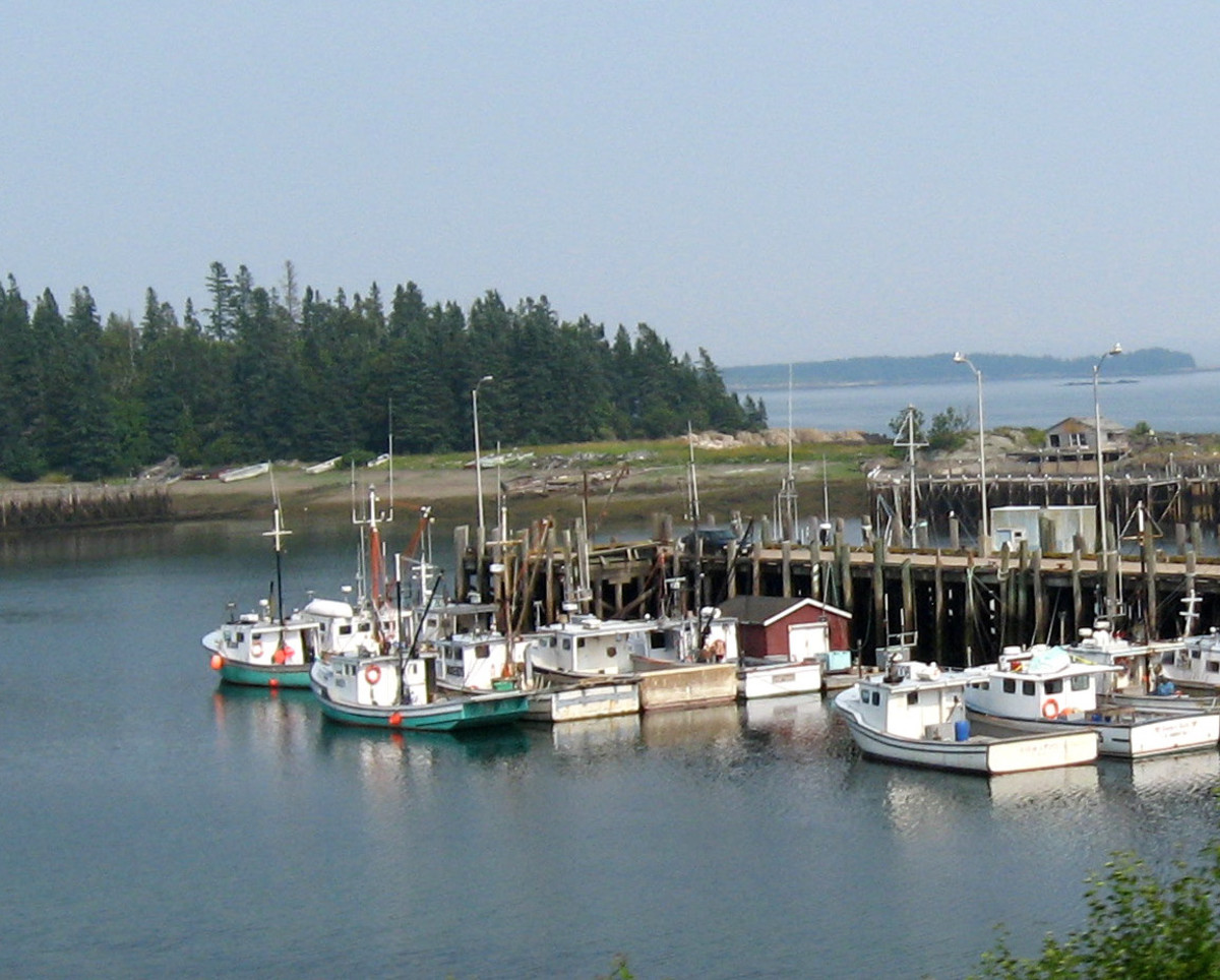 Fishing boats in a New Brunswick harbor (St Martin's).