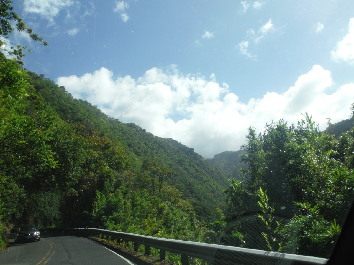 7 Reasons You Need to Rent a Car When in Hawaii