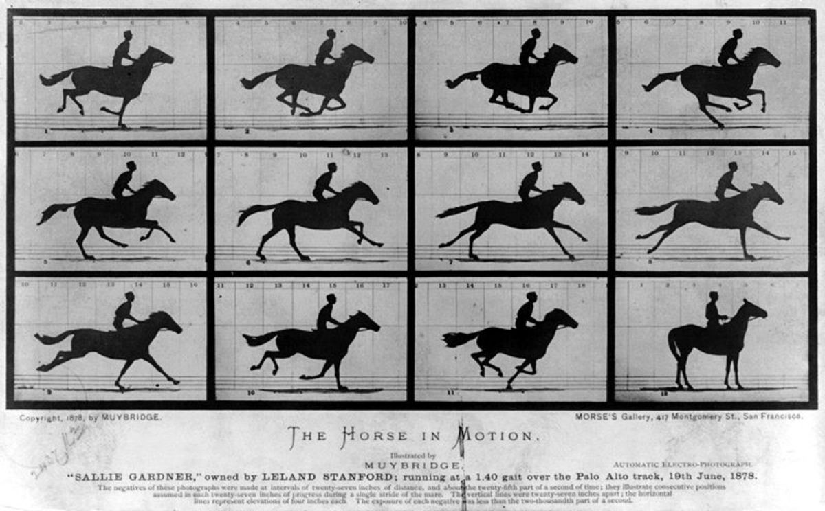 The Origins of Animation