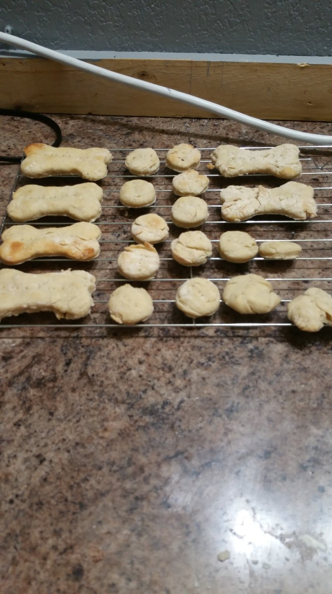 Homemade Doggy Treats Recipe