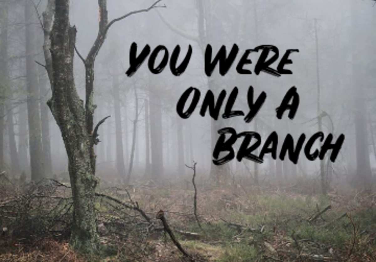 Poem: You Were Only A Branch