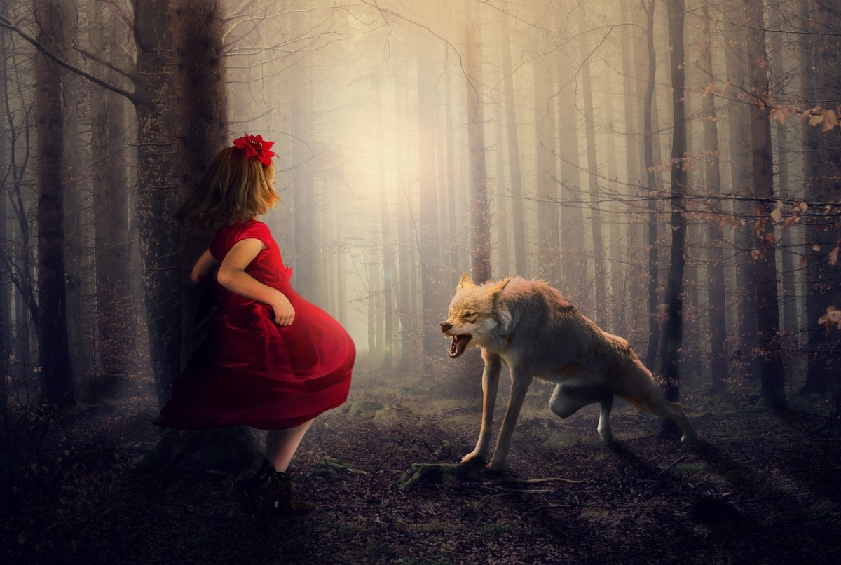 Tangerinehippie And Little Red Riding Hood