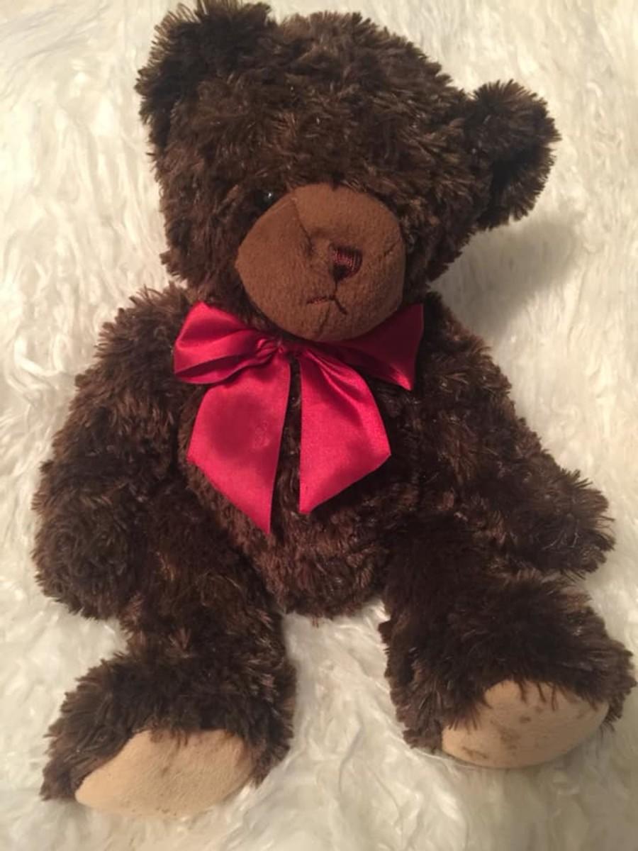 Chocolate Valentine Teddy Bear, Chapter 1