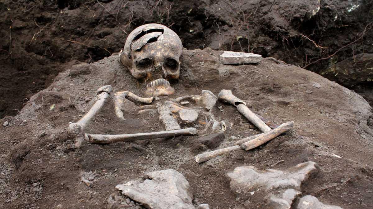 Vampire Grave Excavated.