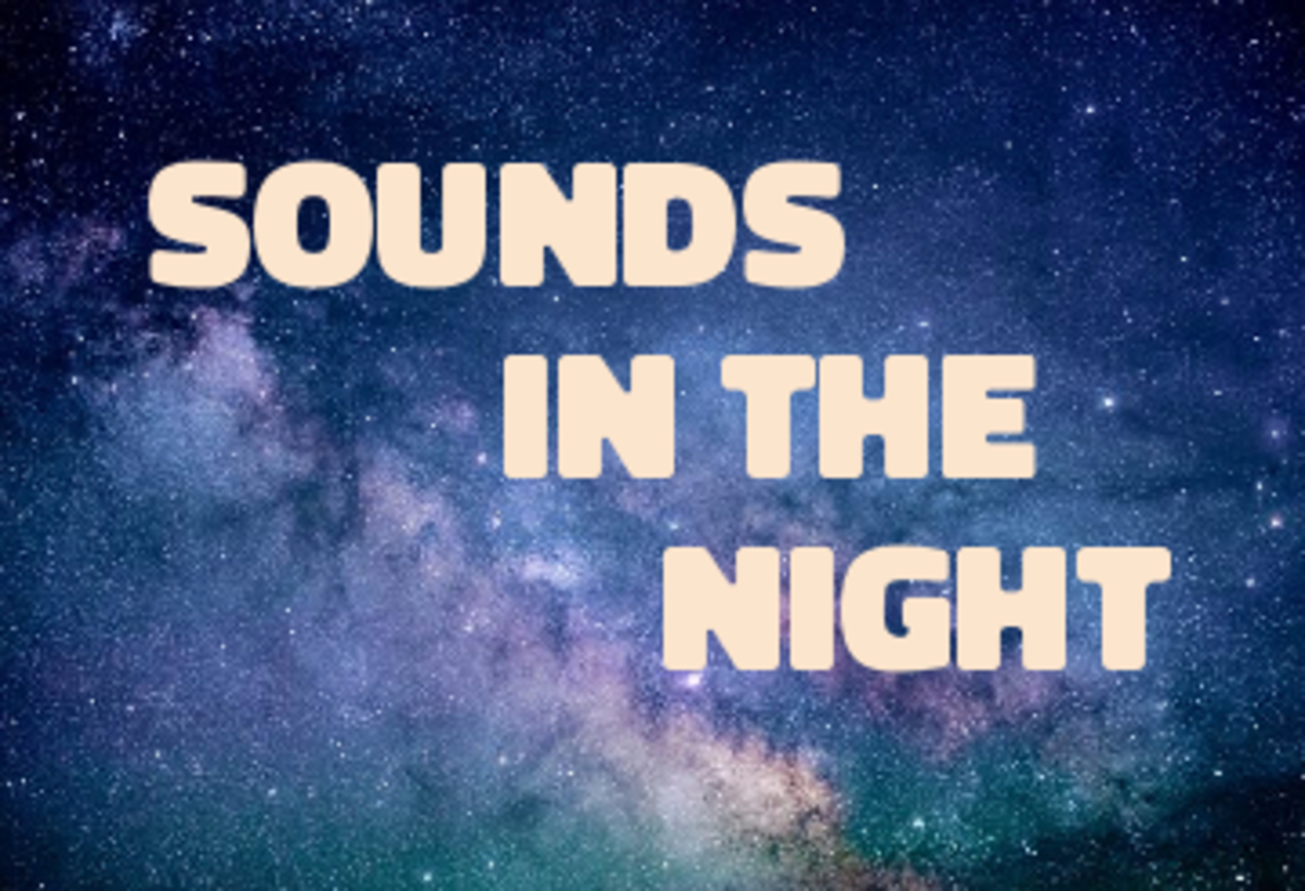 Poem: Sounds in the Night