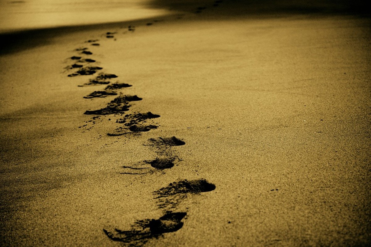 David Ingram's Epic Walk
