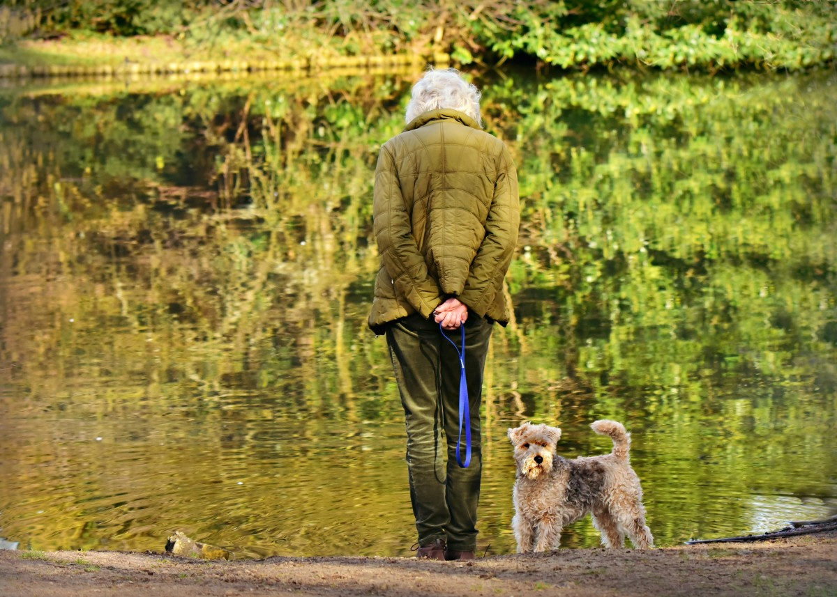 Estate Planning for Seniors & Their Pets