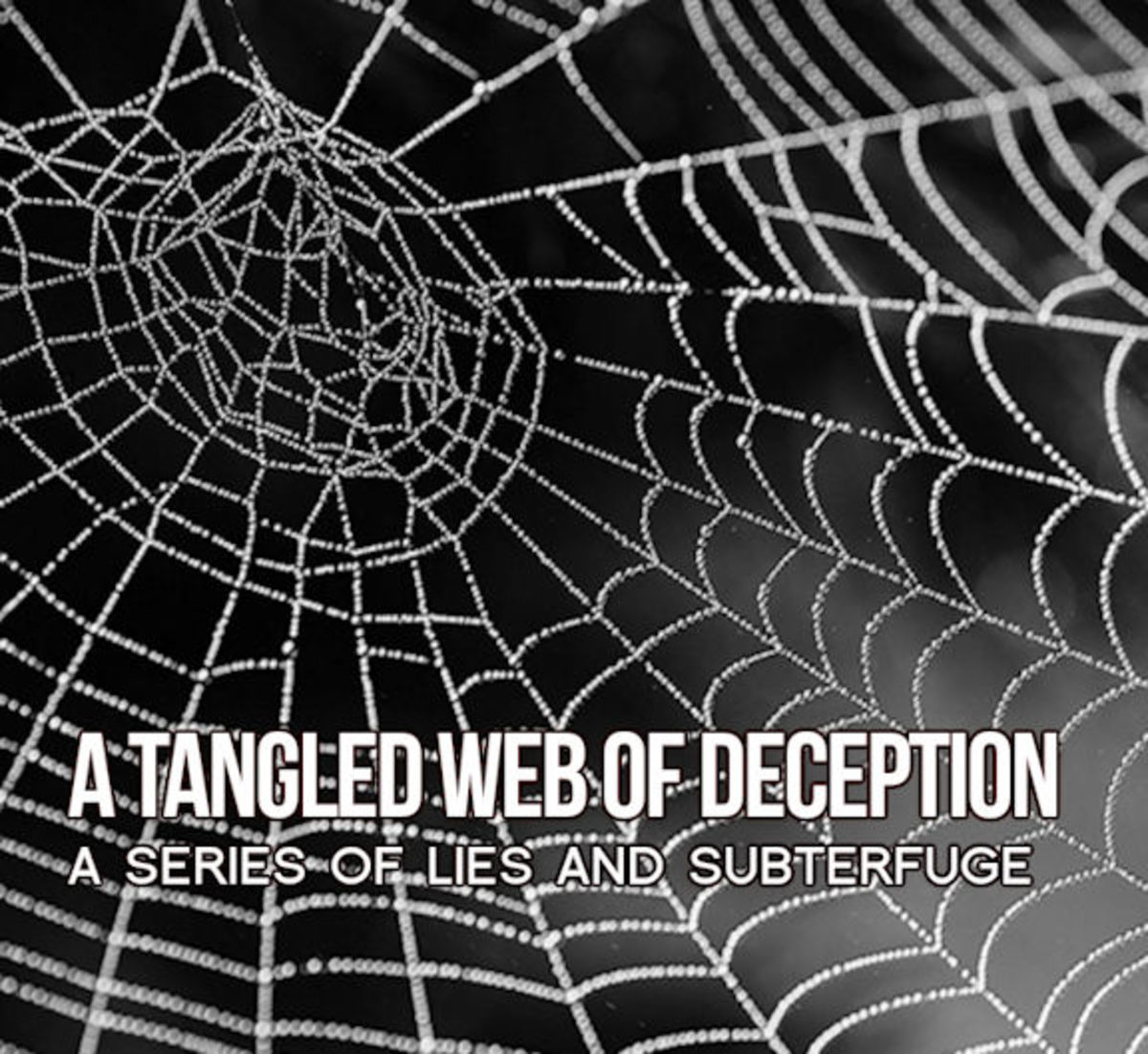 The more you struggle in a web--the more you will become entangled!