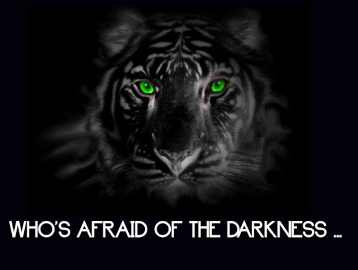 Who's Afraid of the Darkness 13