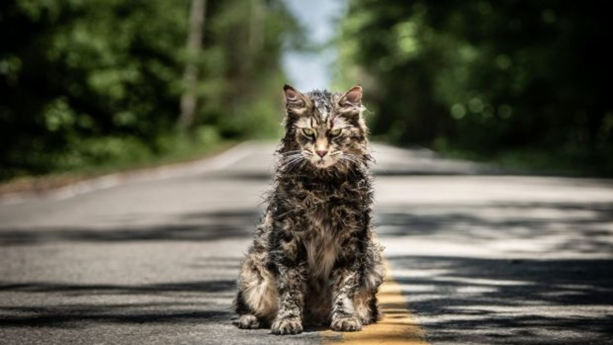 'Pet Sematary' (2019) Film Review w/ SPOILERS