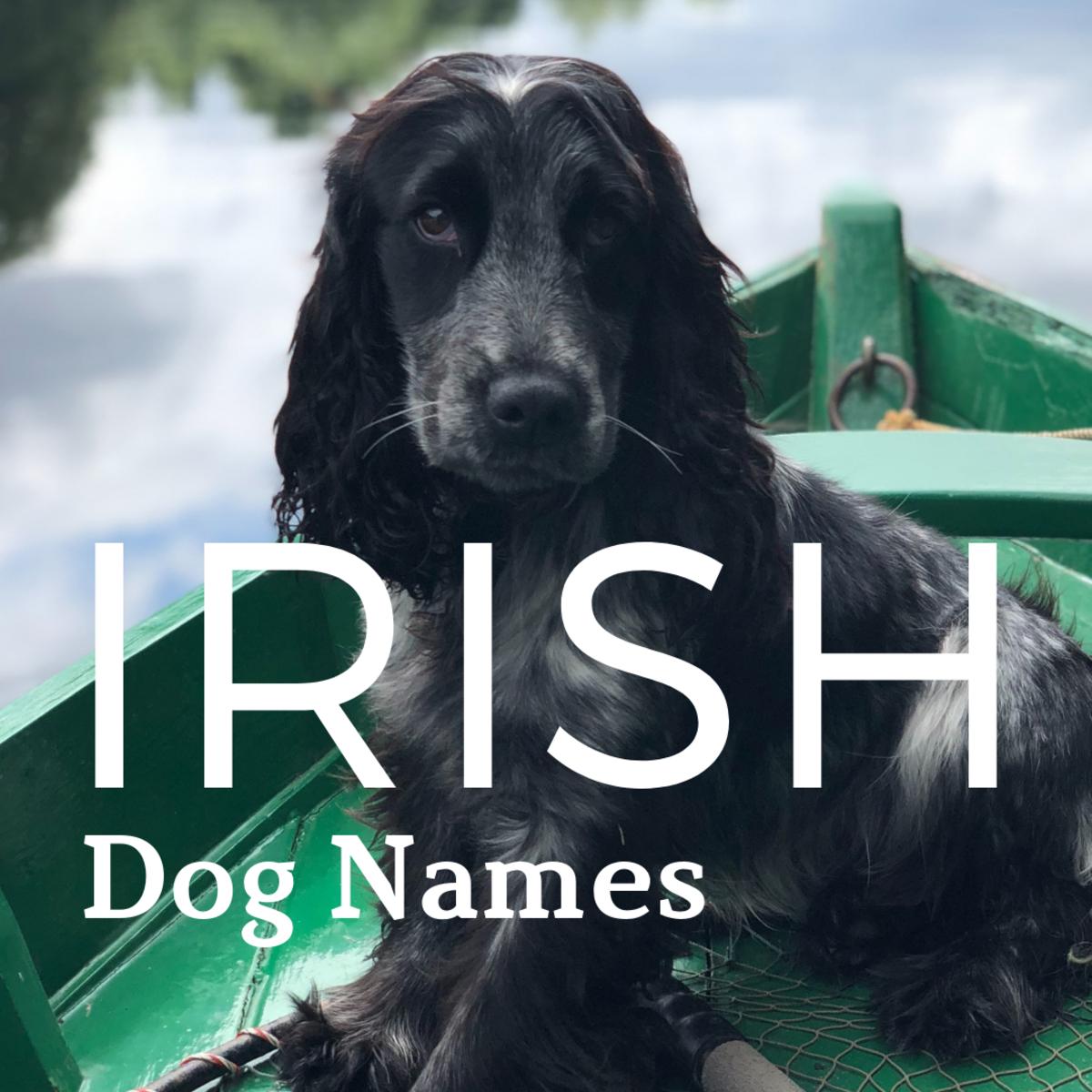 Irish names are magical, mystical, and beautiful.