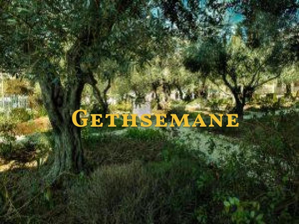 Jesus' Agony in the Garden of Gethsemane