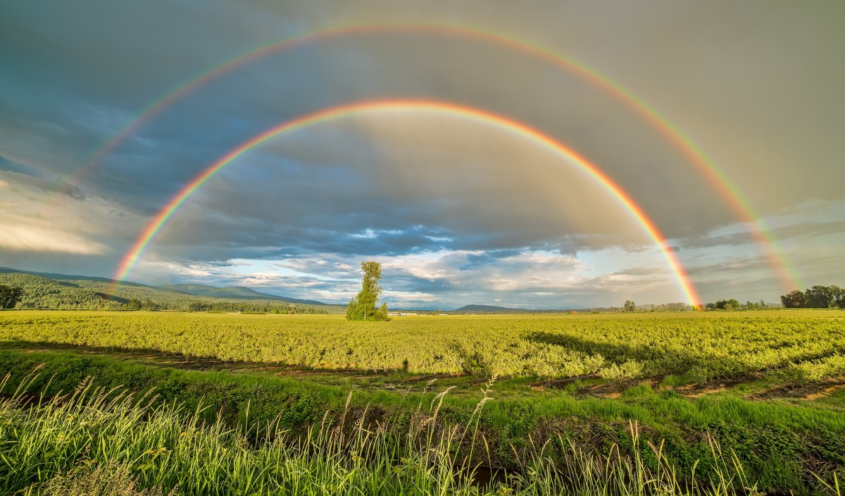 A Legacy of a Rainbow Poet: Poem - A Humble Offering to John Hansen!