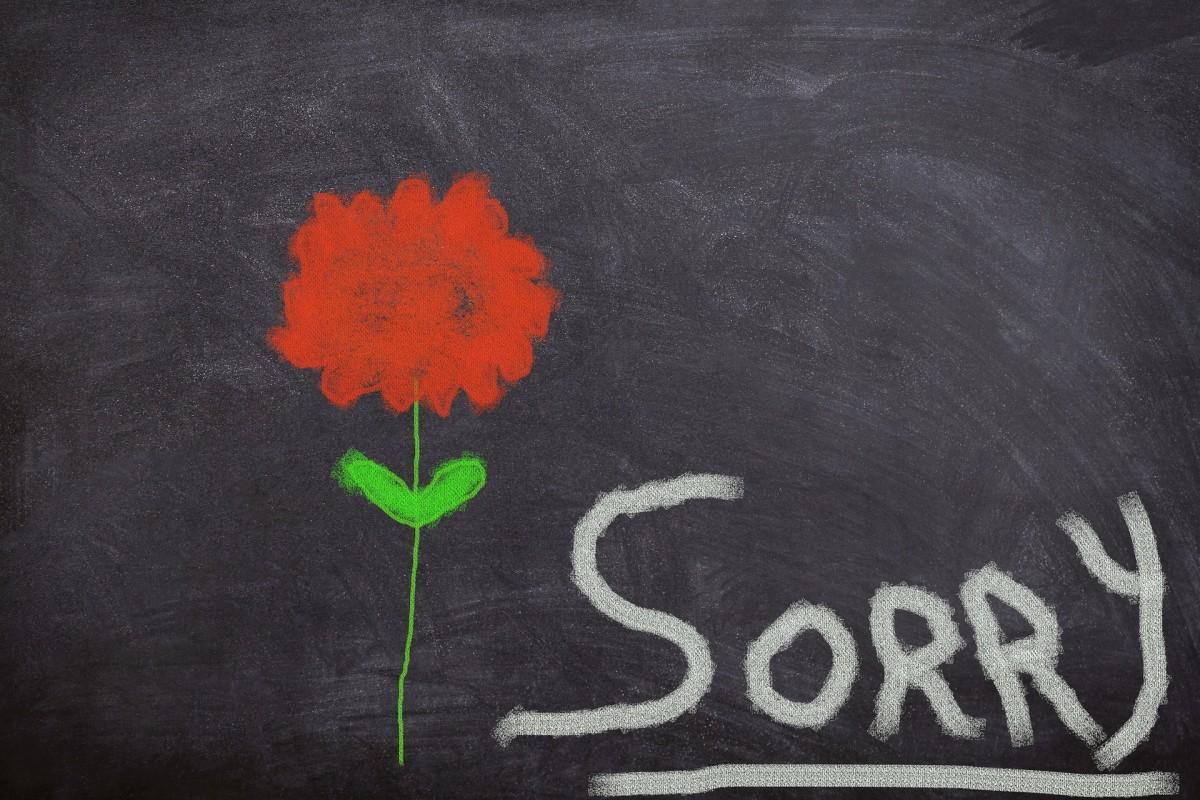 forgive-me-if-i