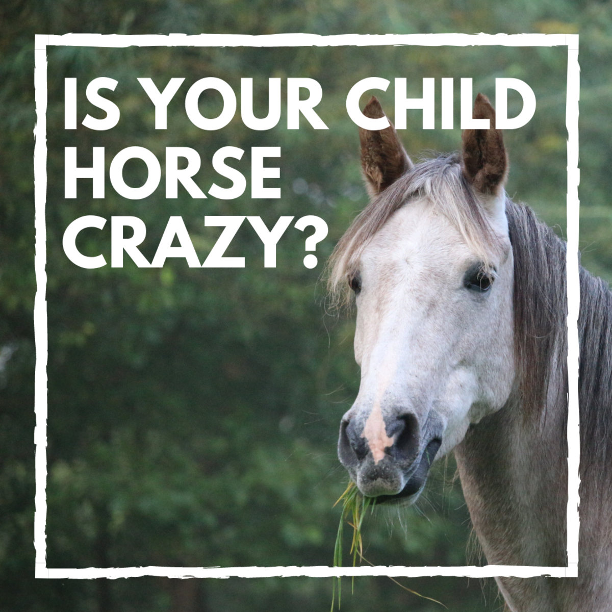 Will My Child Outgrow the Horse Phase? 20 Signs to Look For