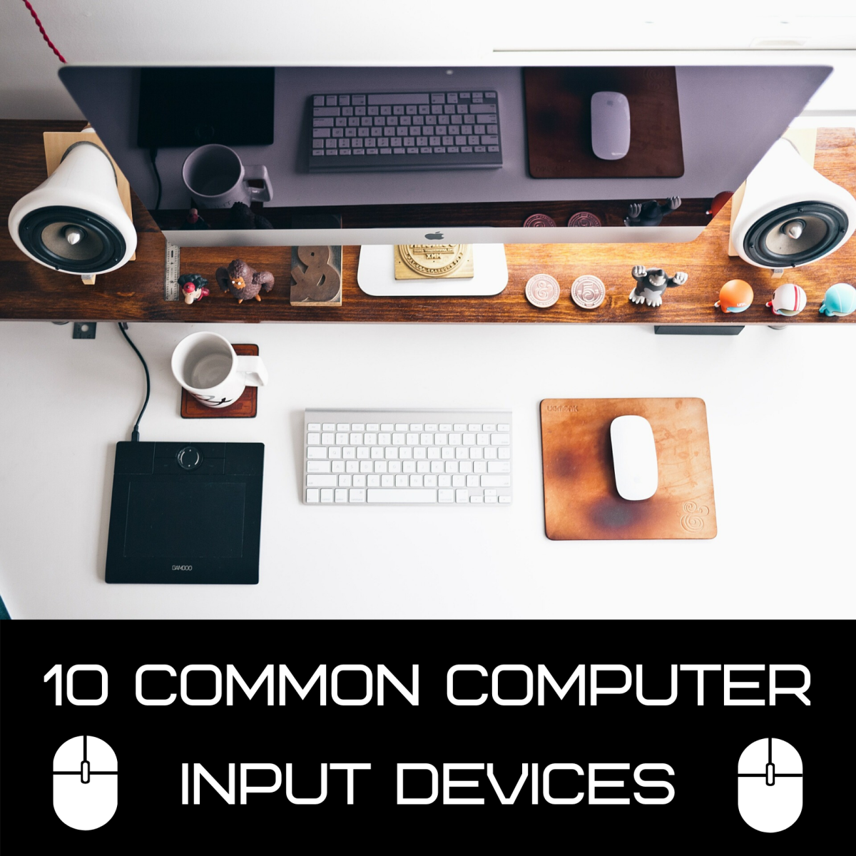 This article covers 10 of the most common input devices used with home and office computers.
