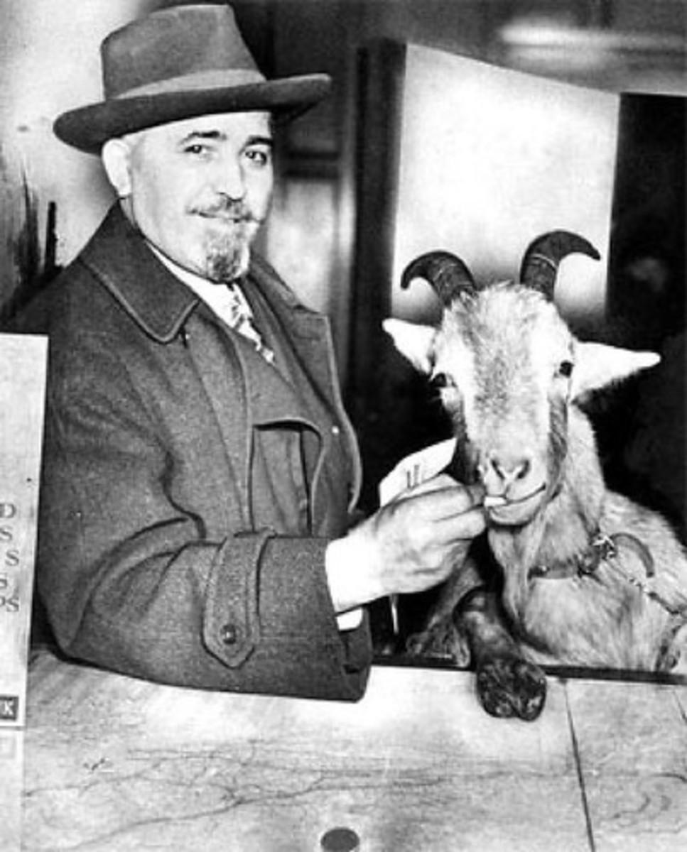 William Sianis and Stinky Murphy