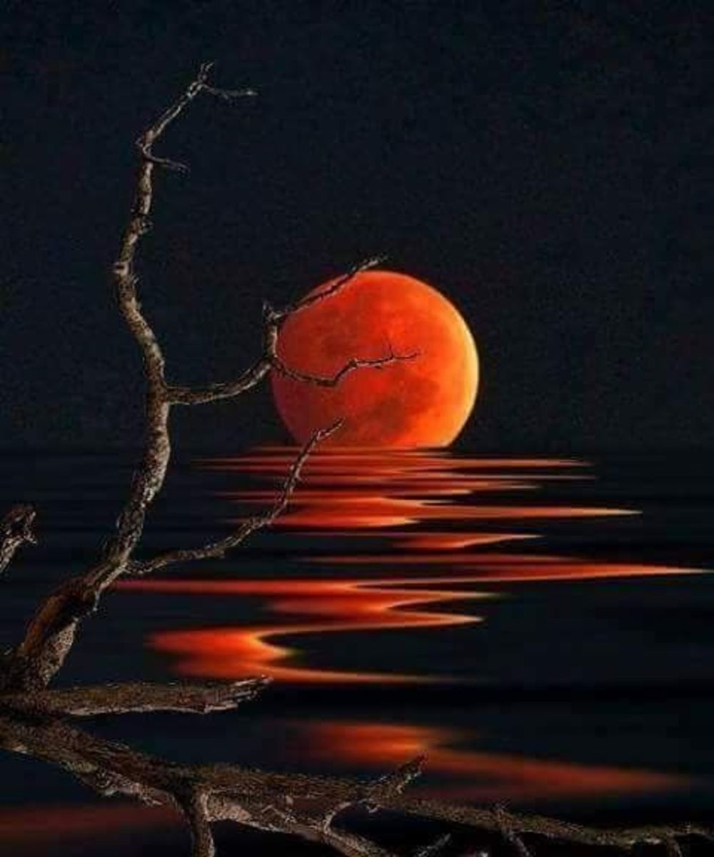 August's Blood Moon Lagoon