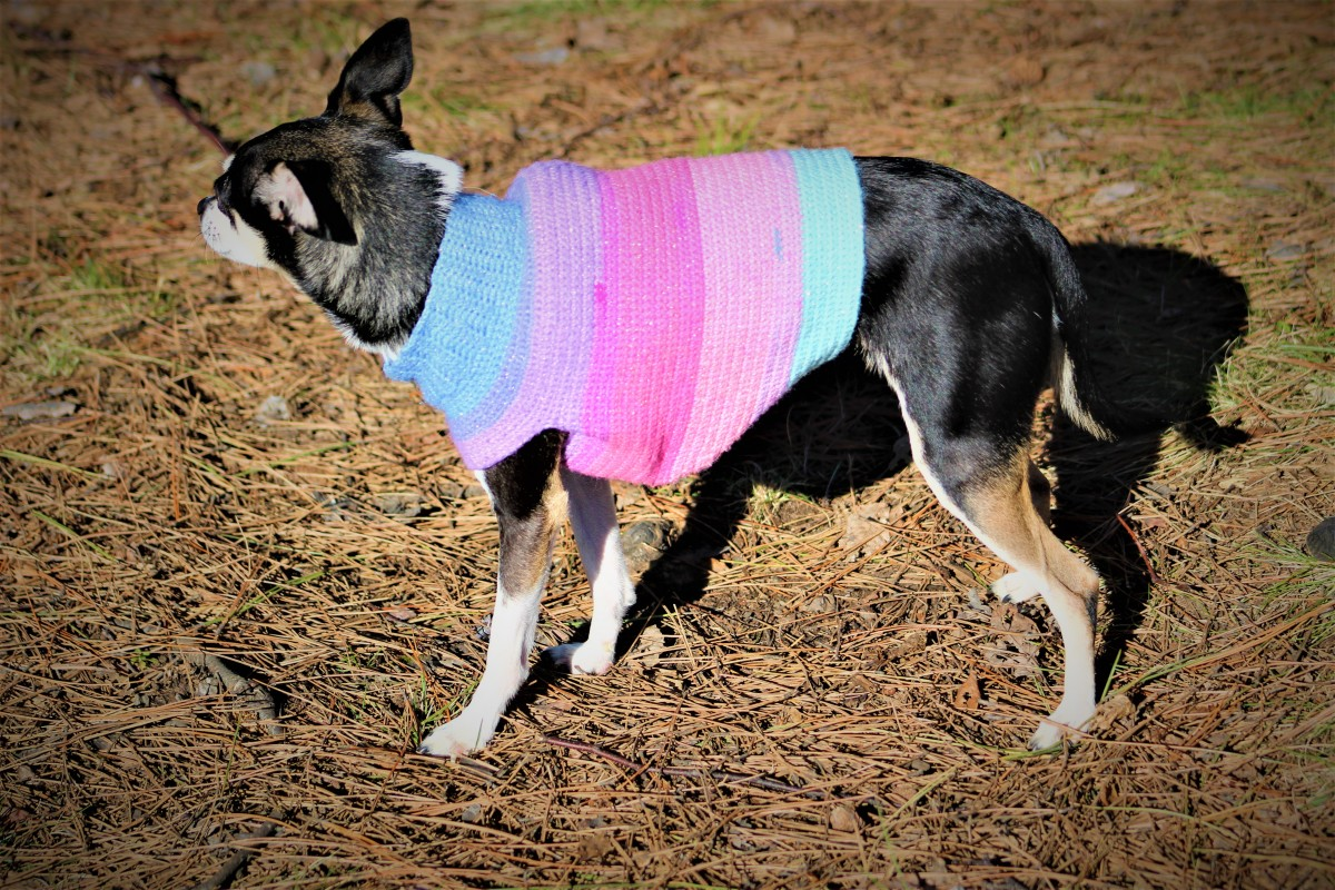 Fairy Dust Dog Sweater Crochet Pattern