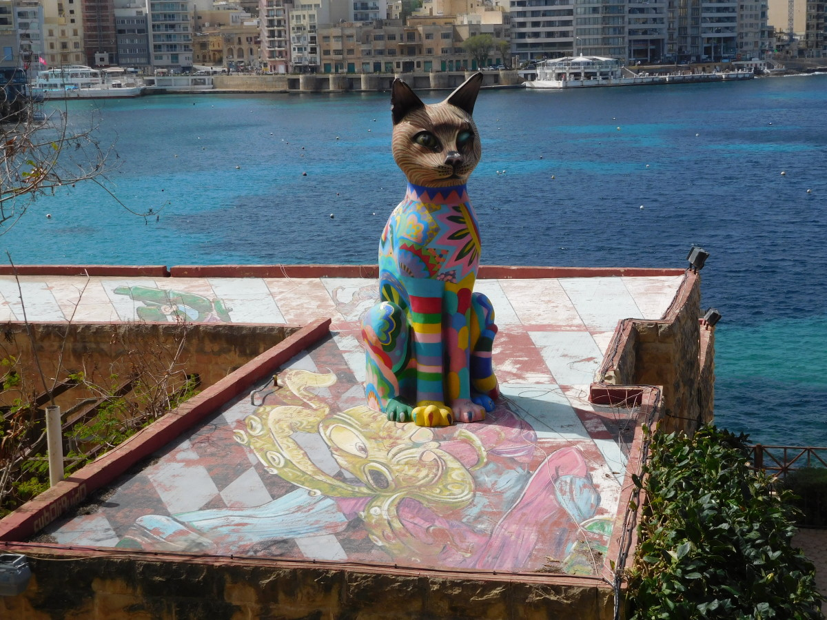 Rainbow Cat in Malta
