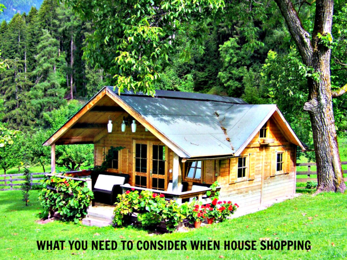 What You Need to Consider When House Shopping