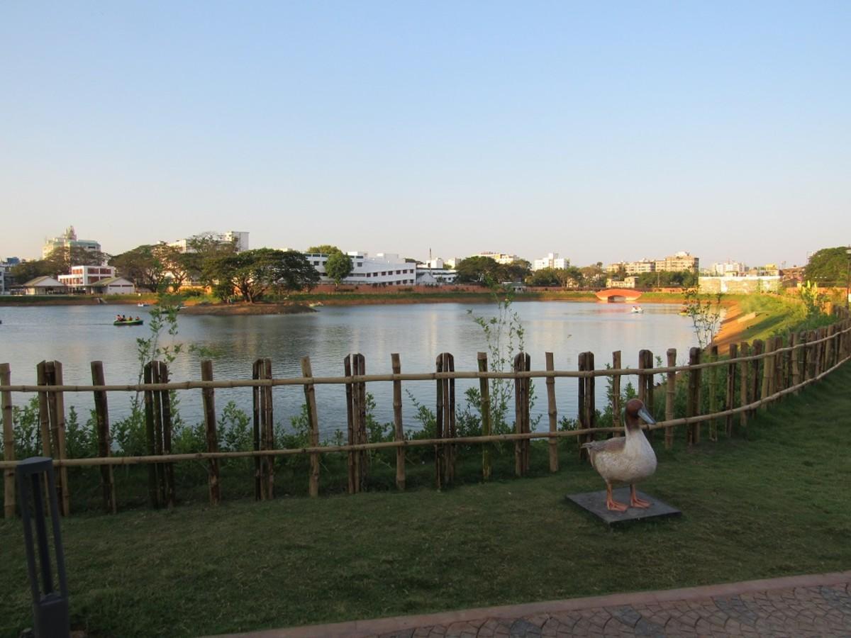 The lake inside Chetpet Eco Park.