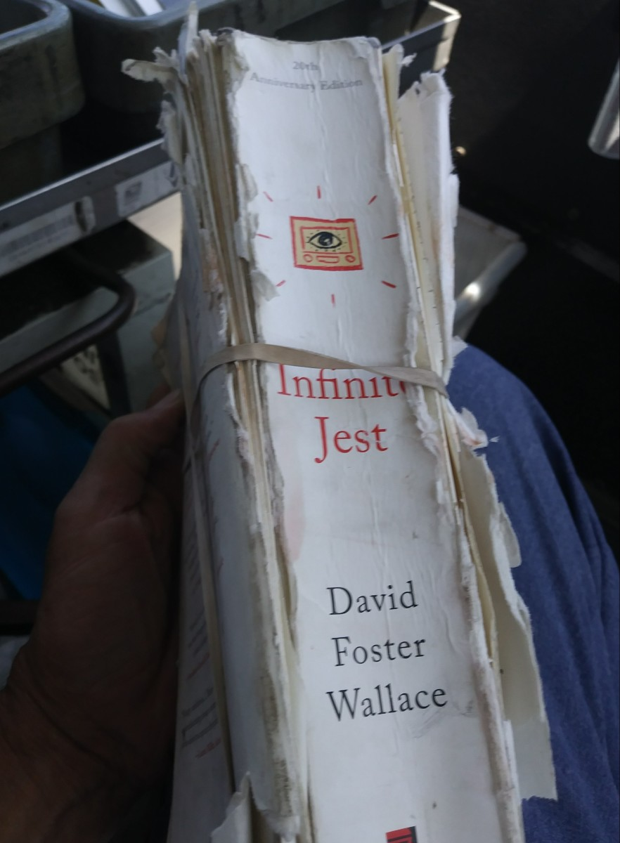 By the end Infinite Jest was in tatters, literally falling apart in my hands.  I had to use rubber bands to keep the novel from bursting its literary rivets.