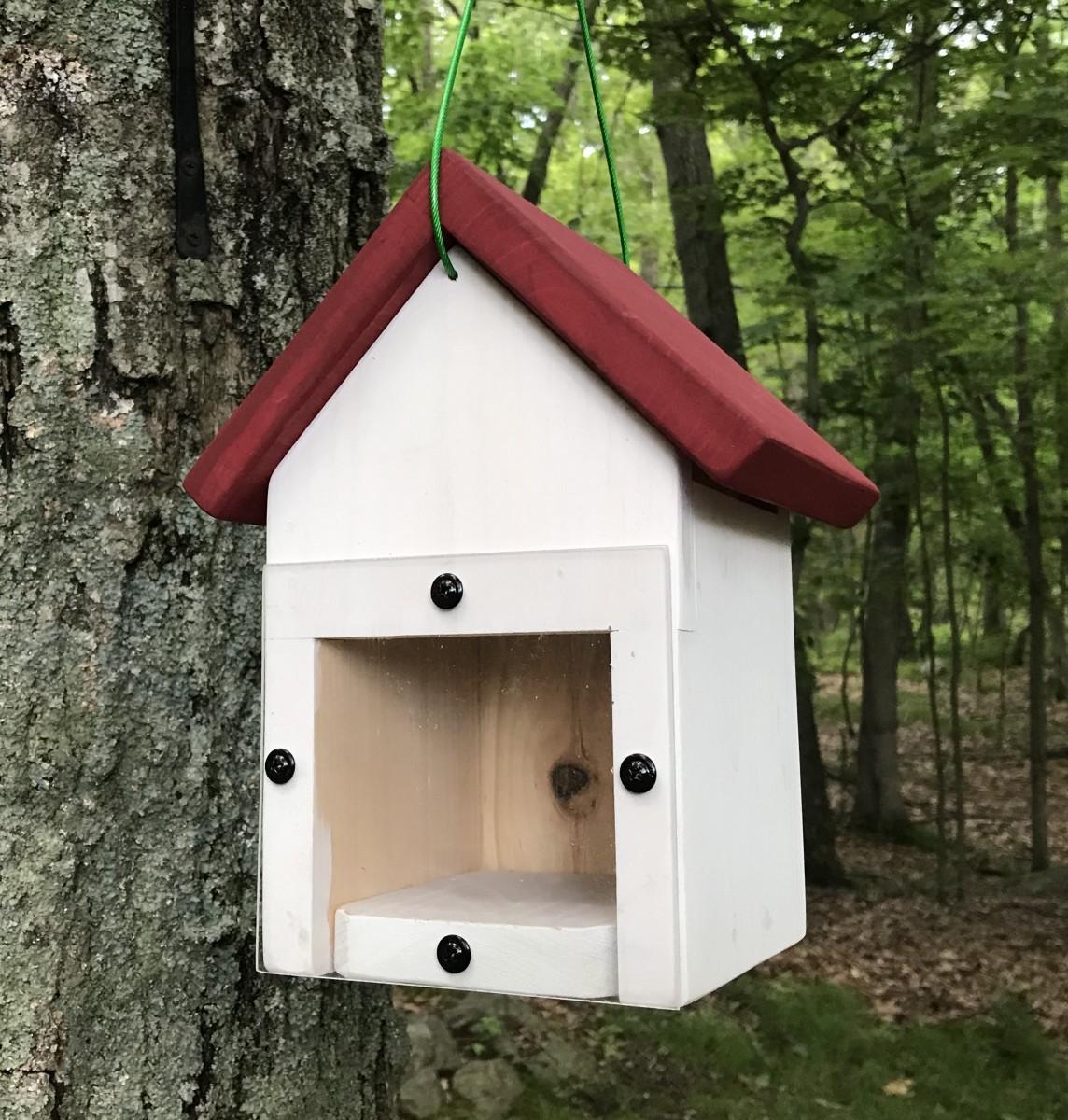 Spy Window Nest Box (rear view)