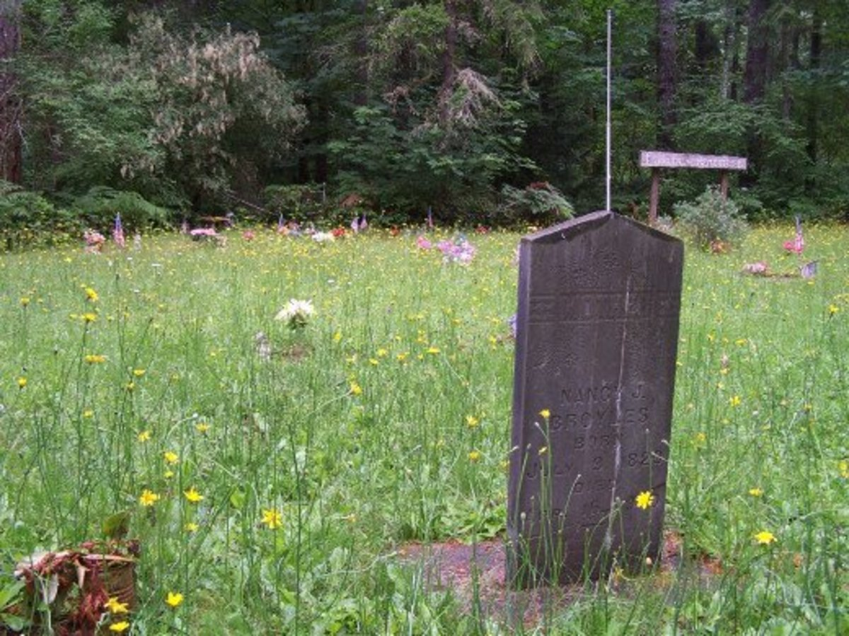 Obscure meadow caresses a lone tombstone