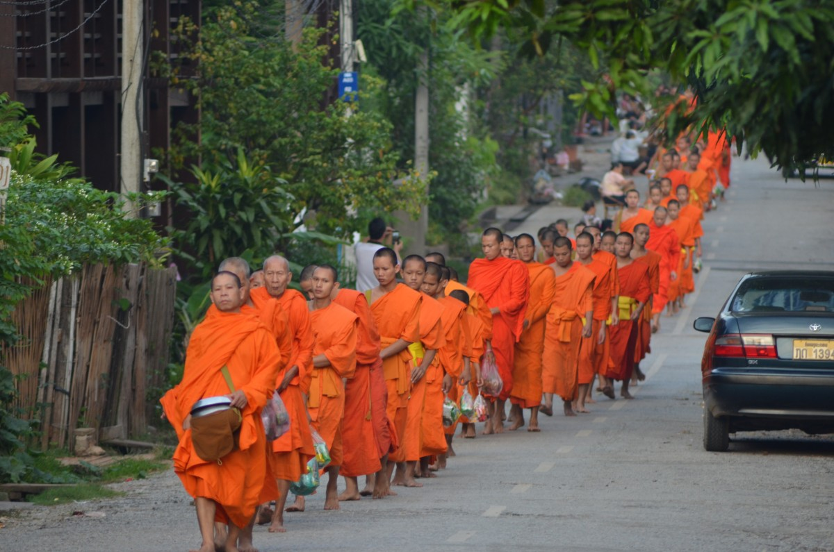 The monks of Luang Prabang (c) A. Harrison