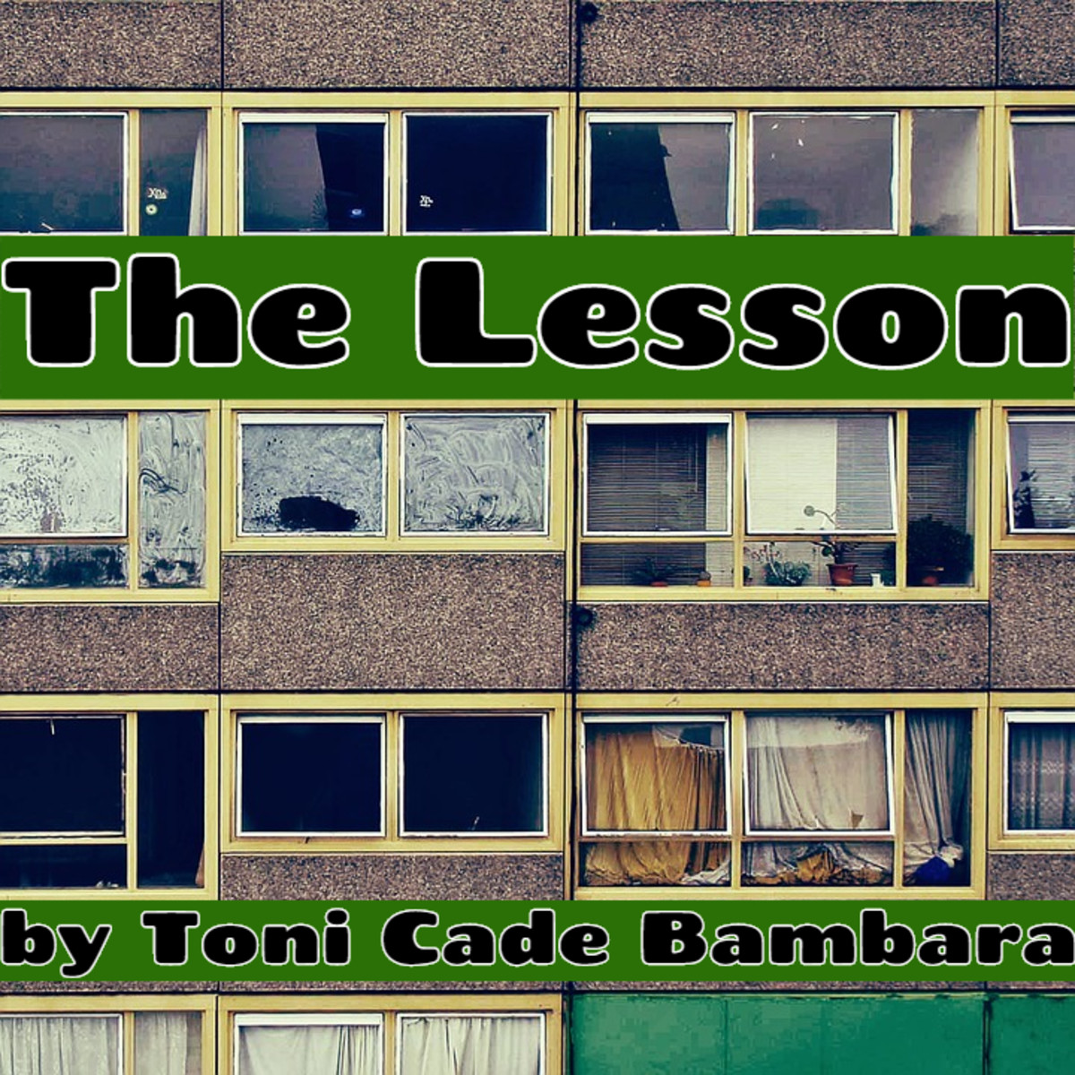 """Analysis of """"The Lesson"""" by Toni Cade Bambara"""