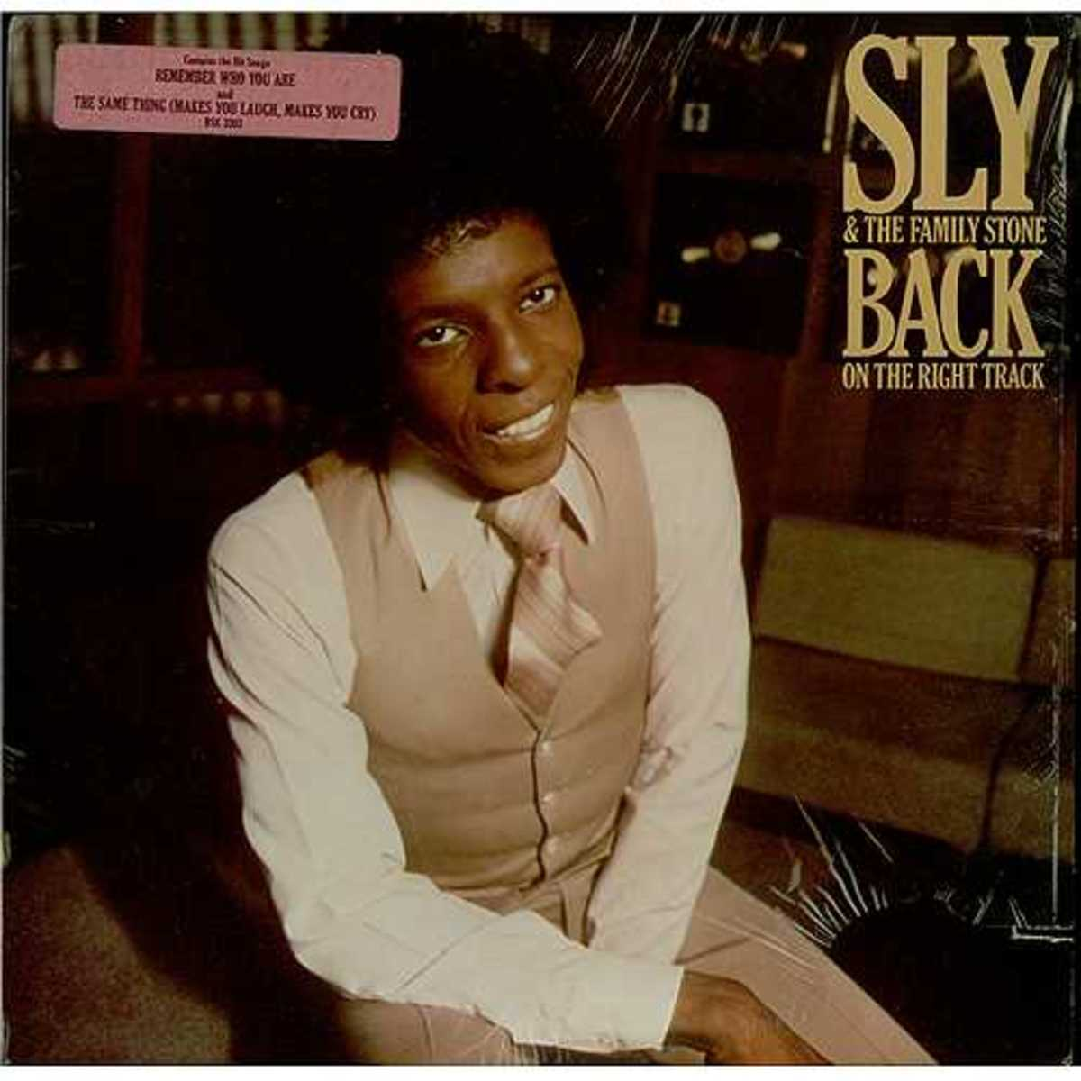 "Sly and the Family Stone Get ""Back on the Right Track""... or Do They?"