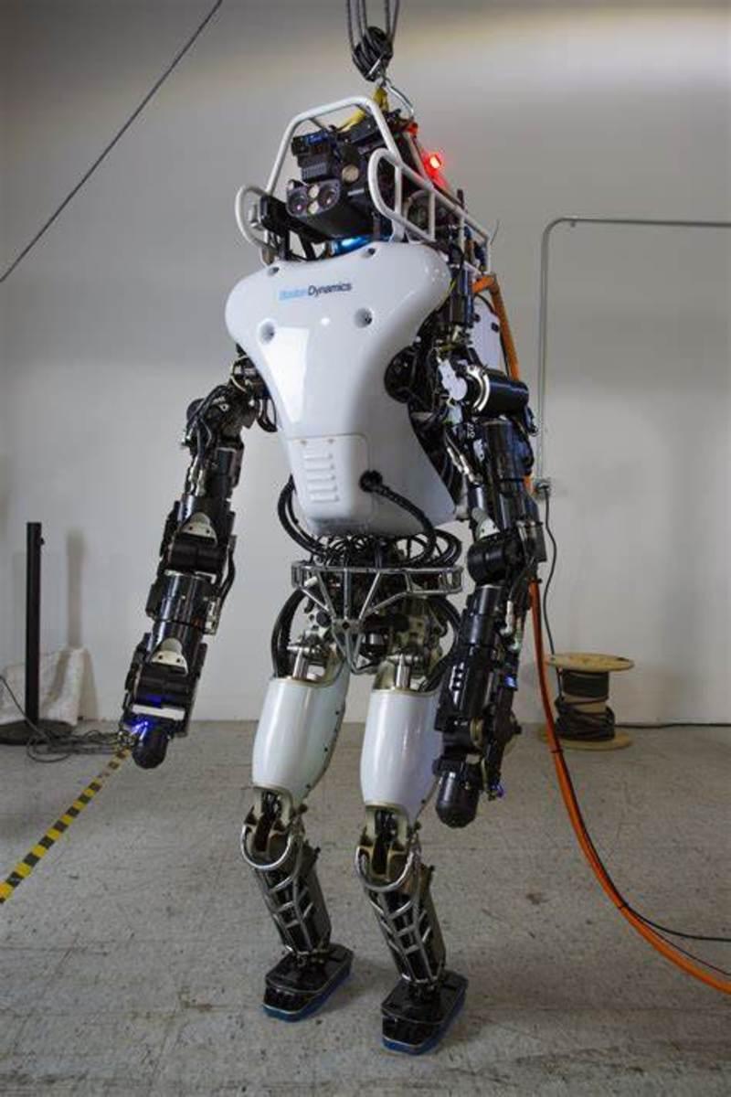 Human Robotic Tendencies