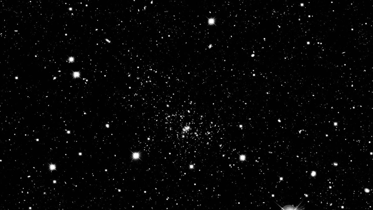 The Stars by Richard Tyler