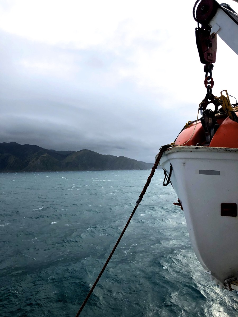 The Best Way to Cross the Cook Strait in New Zealand
