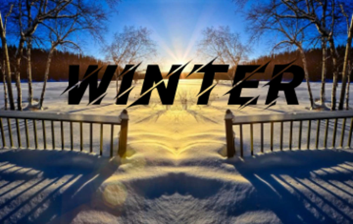 Poem: Stir Crazy by Winter