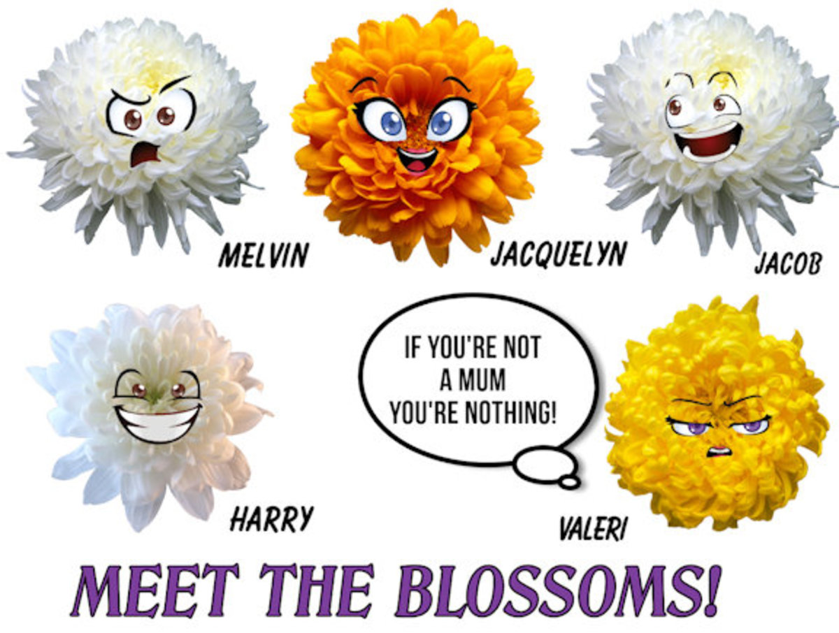 Meet the Blossoms 5