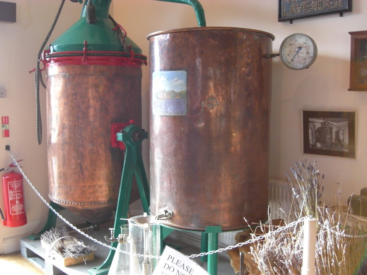 This shows the distillation equipment that is at the Norfolk Lavender farm and nursery for making essential oils.