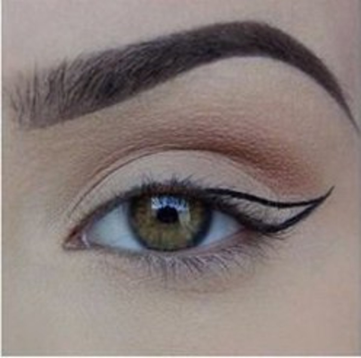 Create the outline of your wing.
