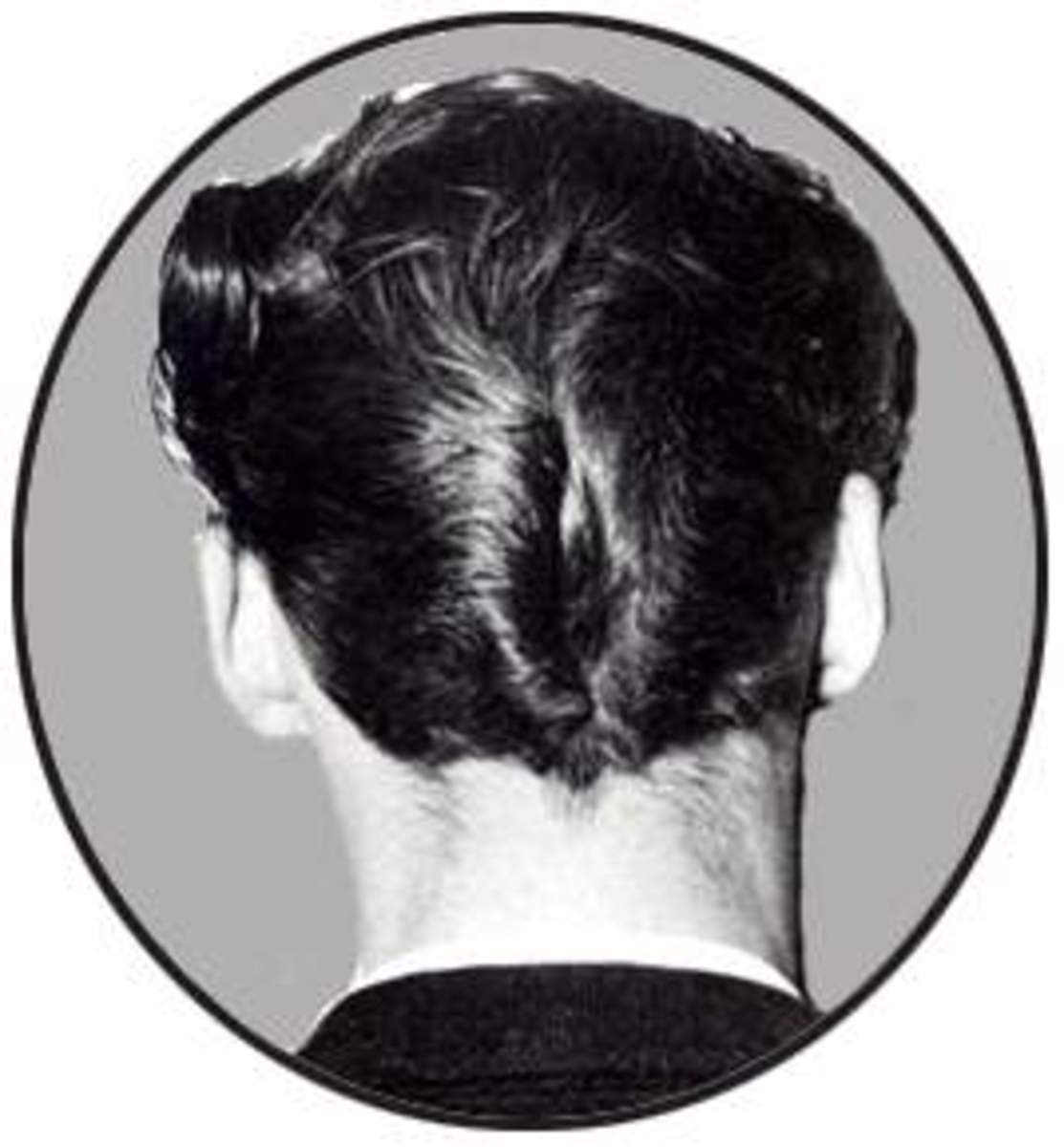 The D.A. hairdo favored by greasers was named for its resemblance to a duck's hind quarters.