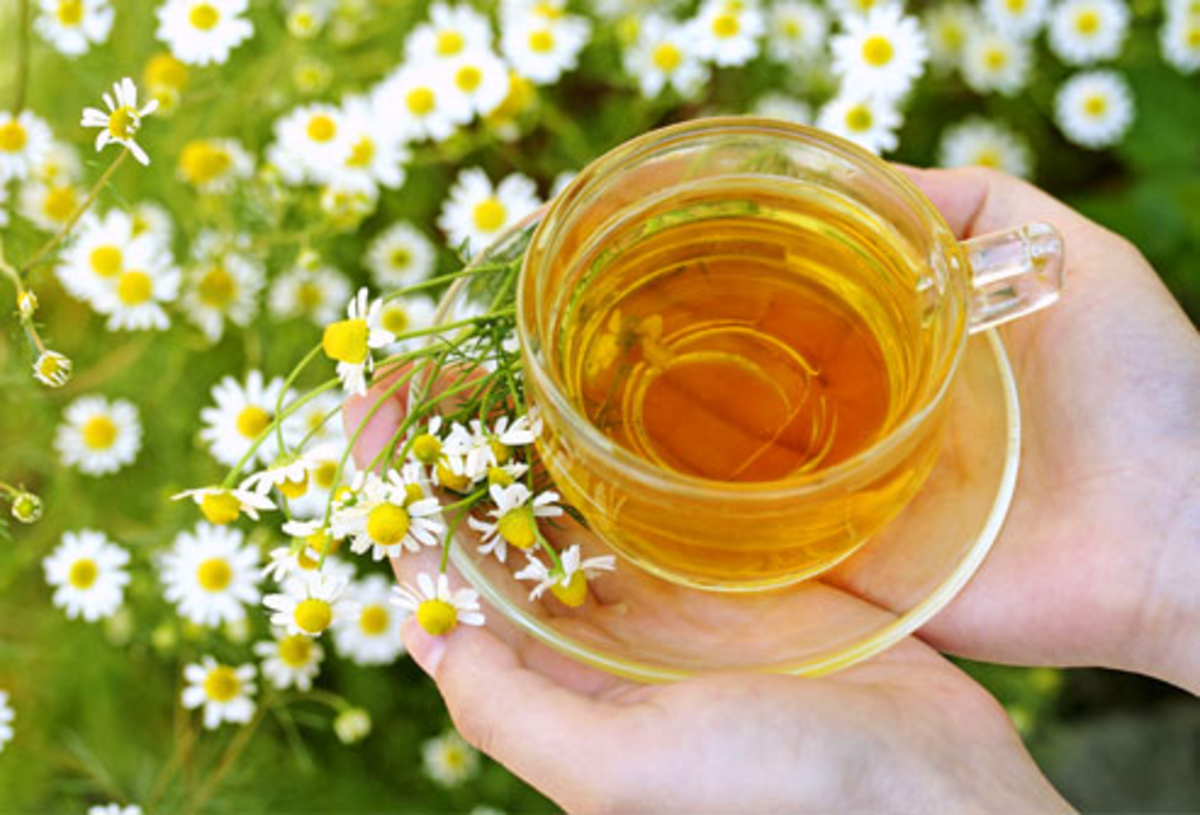 Chamomile is great for naturally lightening hair.