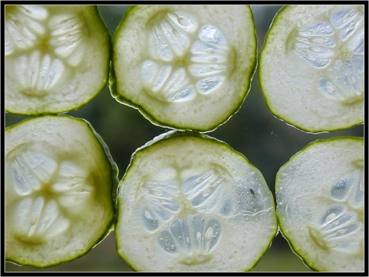 "The saying ""cool as a cucumber"" is one that could not be more true. With over 90% water, they automatically cool down the skin."