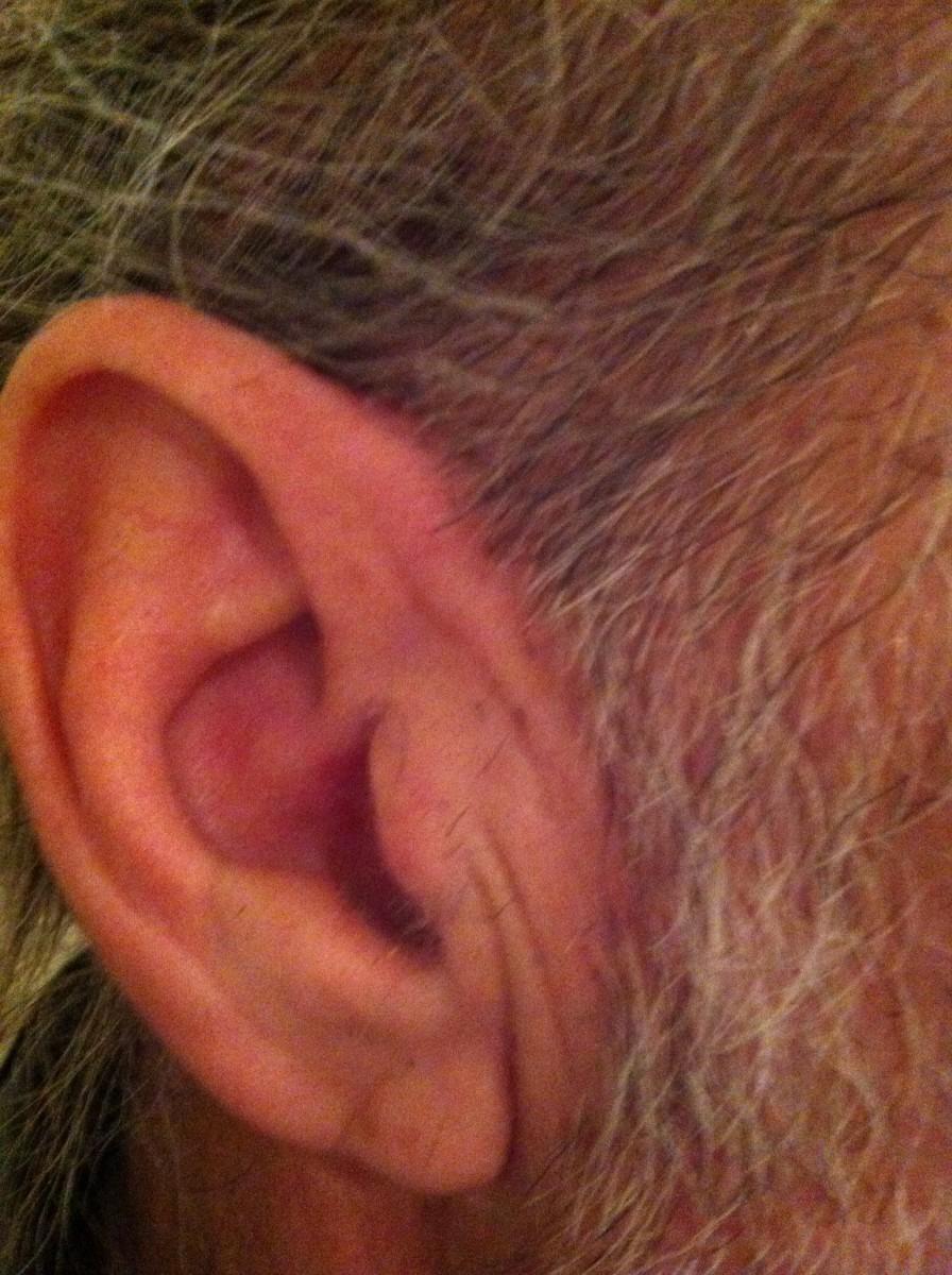 Trimmed ear hairs and ear lobe hairs!