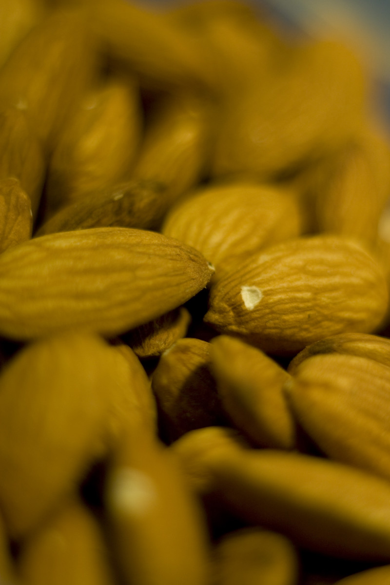 widely grown throughout the world the USA is one of the top almond producers in the world.