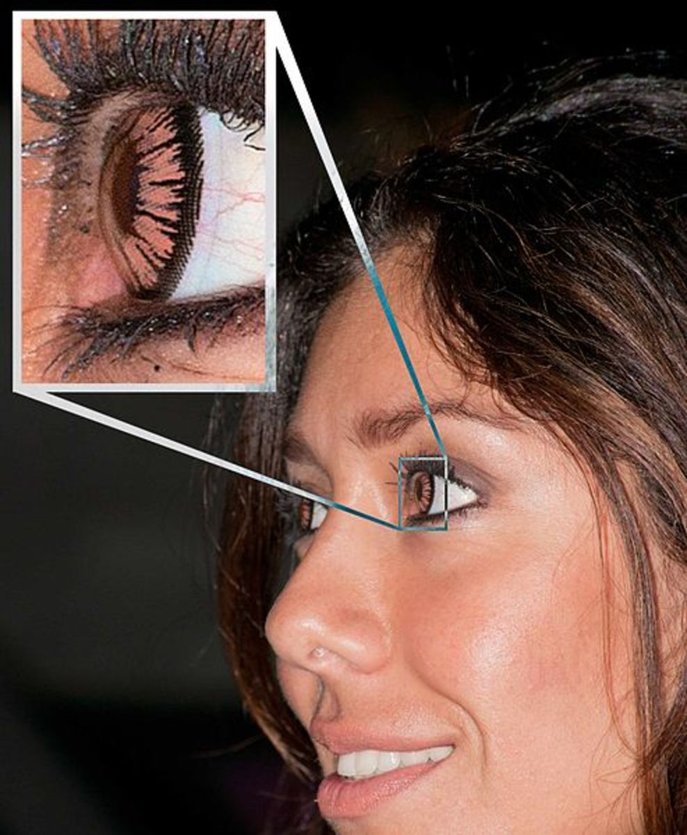 Contact lenses for enhancing the limbal rings
