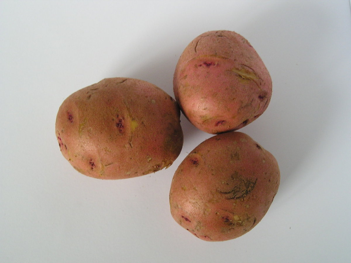 The starch in the potato works to draw out heat.