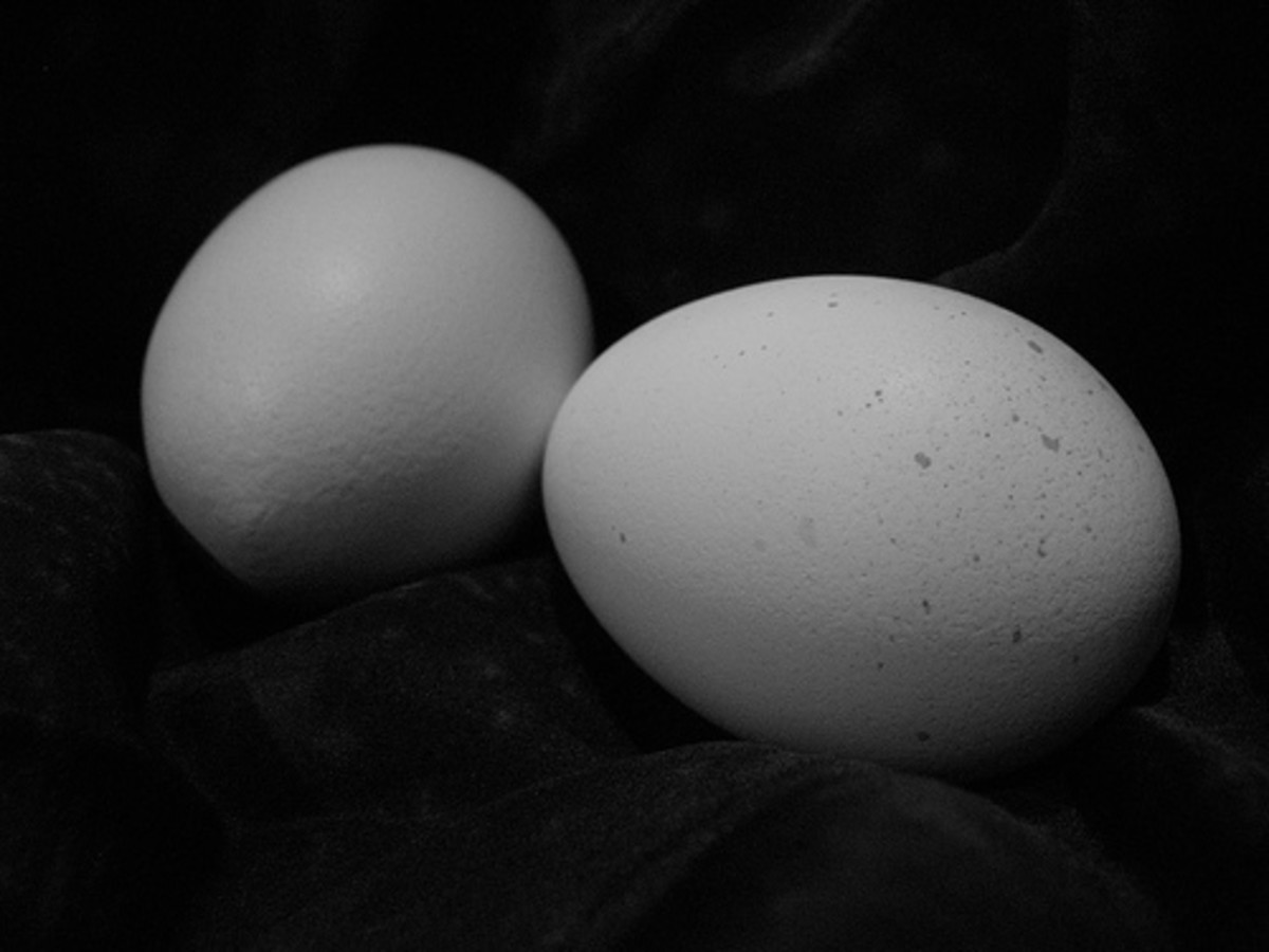 Egg white is a quick anti-wrinkle treatment that works overnight. Yes, overnight!