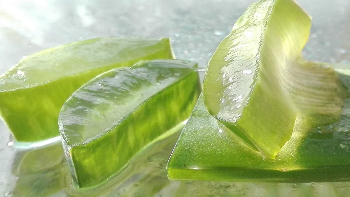 If you have an Aloe Vera plant, you can cut off a leaf and wipe the juice onto your skin.