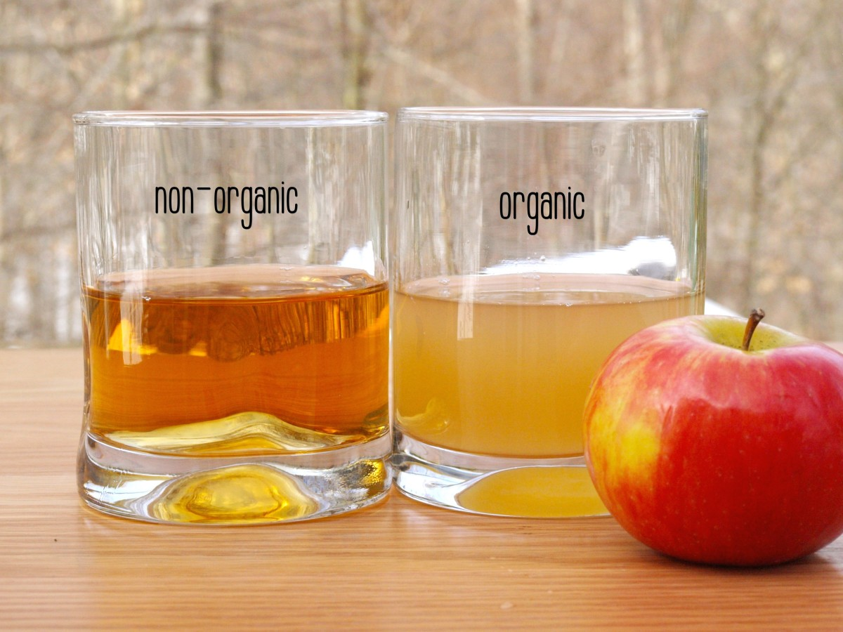 Notice how cloudy the organic ACV is compared to the non-organic.